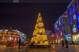 Placing a branded Christmas tree in Dnipro